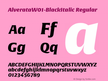 AlverataW01-BlackItalic Regular Version 1.10 Font Sample